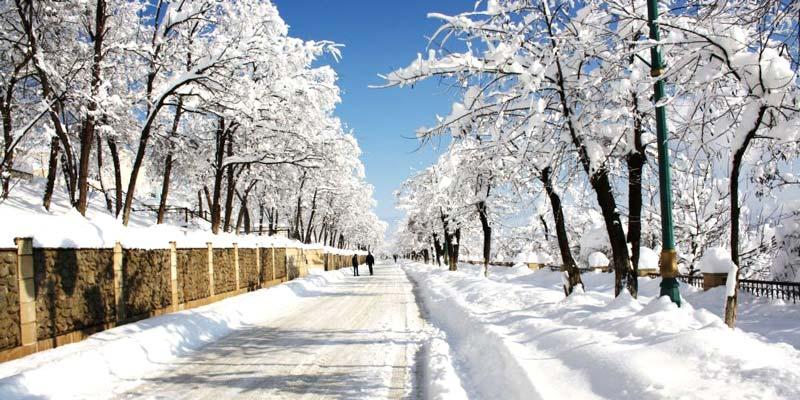 ليريك في الشتاء