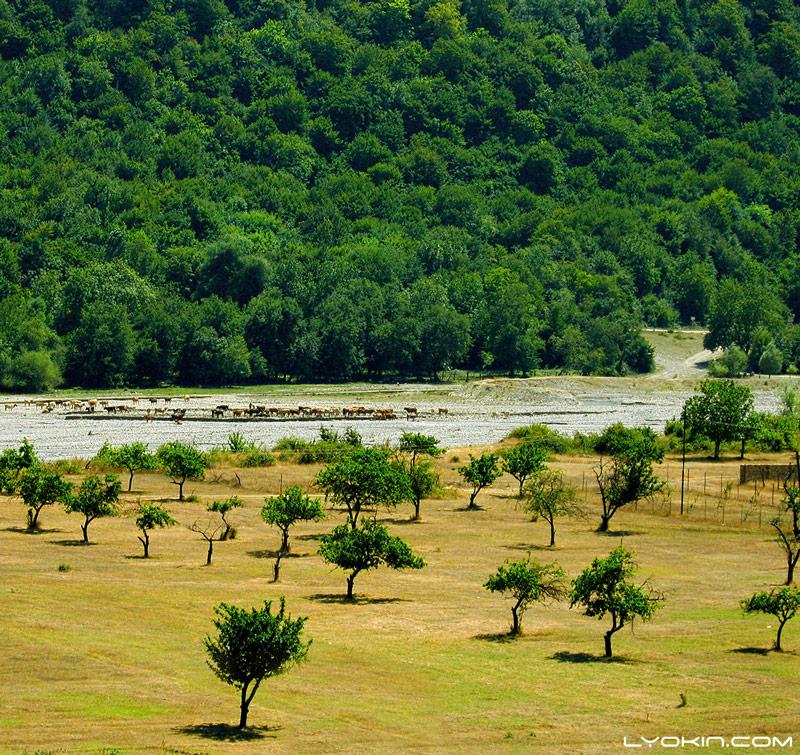 نهر Qusarchay